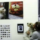 A Year in the Life of Canterbury - PV at The Beaney. Pic Karol Steele