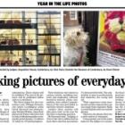 thumbs_2011_04_28_kentish_gazette_canterbury_800