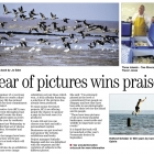 2012_02_01_sheerness_times_guardian_800